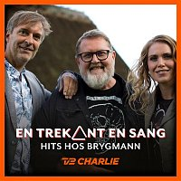 Various Artists.. – En Trekant En Sang 7 - Hits Hos Brygmann