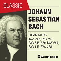 Aleš Bárta – J. S. Bach: Organ Works