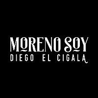 Diego El Cigala – Moreno Soy