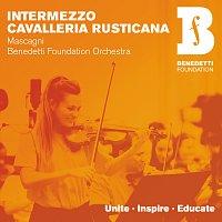 Benedetti Foundation Orchestra, Nicola Benedetti, Natalia Luis-Bassa – Cavalleria rusticana: Intermezzo (Arr. Holt)