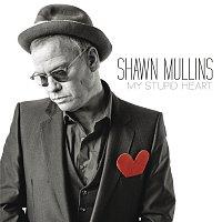 Shawn Mullins – My Stupid Heart