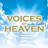 Andrew Parrott – Voices of Heaven