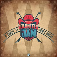 Různí interpreti – Volunteer Jam XX: A Tribute To Charlie Daniels [Live]