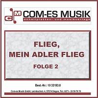 Přední strana obalu CD Flieg, mein Adler flieg, Folge 2