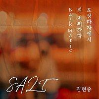 Kim Hyun Joong – SALT