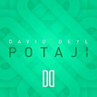 David Deyl – POTAJÍ