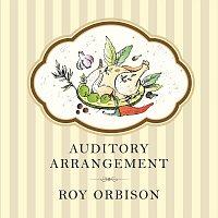Přední strana obalu CD Auditory Arrangement