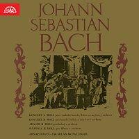 Ars rediviva, Milan Munclinger – Bach: Koncerty
