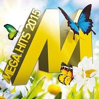 Různí interpreti – Megahits 2015.1