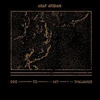 Asaf Avidan – Ode To My Thalamus