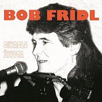 Bob Frídl – Divadlo života