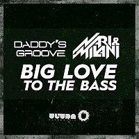 Daddy's Groove vs. Nari, Milani – Big Love to the Bass