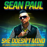 Sean Paul – She Doesn't Mind (Remixes)