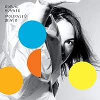Sophie Hunger – Molecules Remix