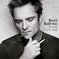 David Hallyday – Tendre Est La Nuit