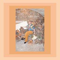 OLSSON – Pink Rambler