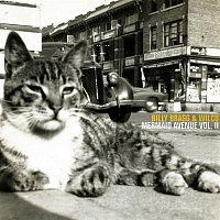 Billy Bragg, Wilco – Mermaid Avenue Vol. II