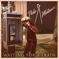 Pete Molinari – Waiting For A Train