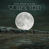 Přední strana obalu CD New Moon Rising