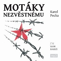 Igor Bareš – Pecka: Motáky nezvěstnému