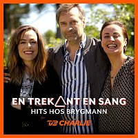 Various Artists.. – En Trekant En Sang 3 - Hits Hos Brygmann