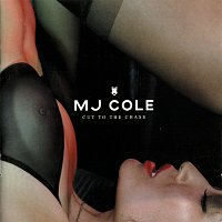 MJ Cole – Cut To The Chase