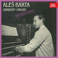 Aleš Bárta – Varhany (Bach, Reger, Flosman)
