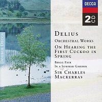 Přední strana obalu CD Delius: Orchestral Works