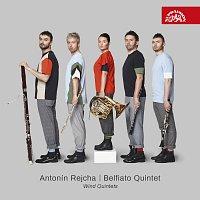 Přední strana obalu CD Rejcha: Dechové kvintety