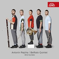 Rejcha: Dechové kvintety