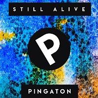 Pingaton – Still Alive