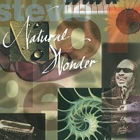 Stevie Wonder – Natural Wonder