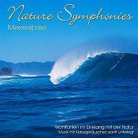 Dave Miller – Nature Symphonies: Meeresbrise