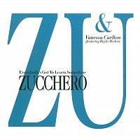 Zucchero, Vanessa Carlton, Haylie Ecker – Everybody's Got To Learn Sometime