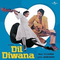 Různí interpreti – Dil Diwana