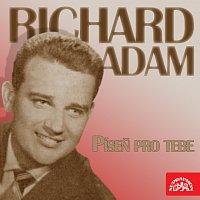 Richard Adam – Píseň pro tebe