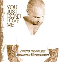 David Morales, Jonathan Mendelsohn – You Just Dont Love Me