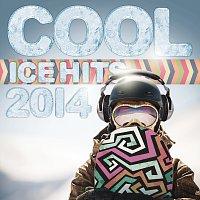 Přední strana obalu CD Cool Ice Hits 2014
