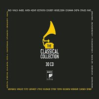 Various Artists.. – L'Arte Della Musica Classica - Capolavori E Maestri