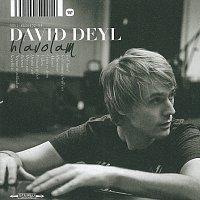 David Deyl – Hlavolam