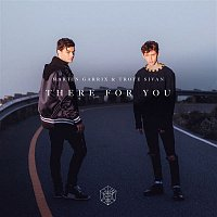 Martin Garrix, Troye Sivan – There For You