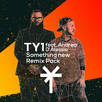 TY1, Andrea D'Alessio – Something New [Remix Pack]