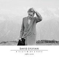 David Sylvian – A Victim Of Stars 1982-2012