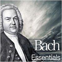 Nikolaus Harnoncourt – Bach Essentials
