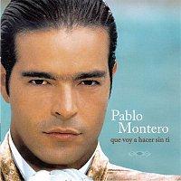 Pablo Montero – Que Voy A Hacer Sin Ti