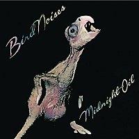 Midnight Oil – Bird Noises