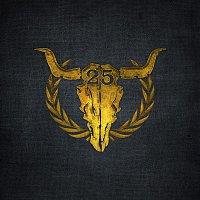 Various Artists.. – 25 Years of Wacken (Live At Wacken 2014)