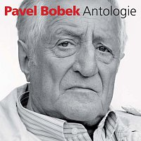 Pavel Bobek – Antologie – CD