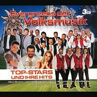 Různí interpreti – Evergreens Der Volksmusik - Set