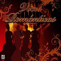 Různí interpreti – Voces Románticas